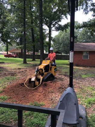 stump grinding cabot, Arkansas