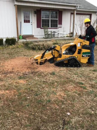 stump grinding ward, arkansas