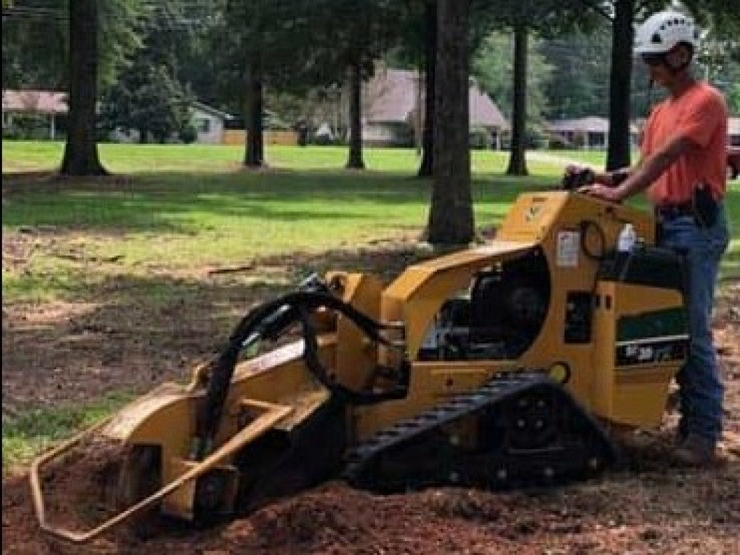 stump grinding austin, Arkansas